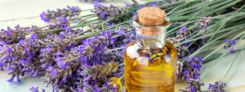 anita-dambrosio-article-tips-ayurveda-with-essential-oils